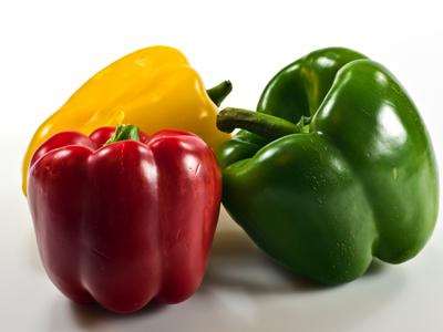 5189bc2e5f3f Puma Springs – Quality organic produce